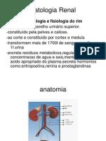 Patologia Renal Glomerular