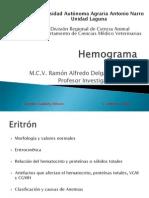 4. Hemograma