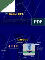 Basic-EFI