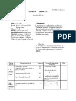 Proiect Didactic Cl. a Va