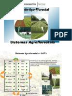 wshp_Sistemas_agroflorestais