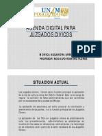 Agenda Digital Para Juzgados Civicos