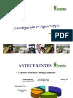 Investigacion Agroenergia