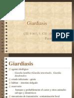 Giardia Sis