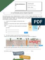 Teste Plantas 1