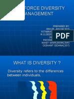 Workforce Diversity Management