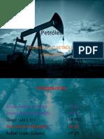 Petróleo.pptx