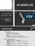 Salmonelose (1)