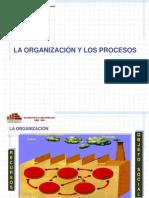 Organización y procesos