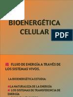 Bionergética-Celular