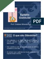 2 Tecido Epitelial Glandular