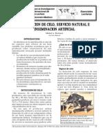 De_09.Es Deteccion de Celo, Servicio Natural e Inseminacion Artificial