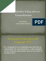 Necesidades Educativas Transitorias 1