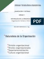 Naturaleza de La Organizacion