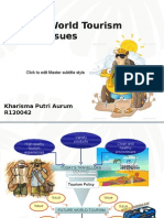 Future World Tourism Policy Issues