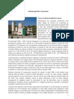 50 - Industria globala a cimentului.pdf