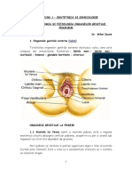 121322885 Anatomia Si Fiziologia Organelor Genitale Feminine