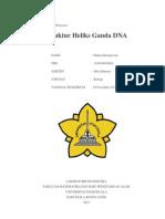 GENET- Struktur DNA Heliks