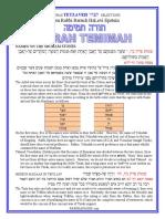 Tetzaveh - Selections from Rabbi Baruch Epstein