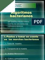 Algoritmos bacterianos