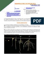 fase..soja.pdf