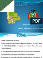 DIAPOSITIVAS PARA COOPERACION INTERNACIONAL  BOLIVIA[1].pptx