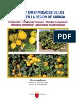 1227-Texto Completo 1 Plagas y enfermedades de los cítricos en la Región de Murcia.pdf.pdf