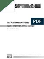 guiapractica.pdf