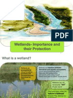 Wetlands- impotance and protection.ppt