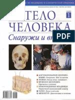 Тело человека N01