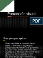 presentacion percepcion
