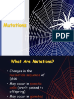 Mutations Powerpoint.ppt
