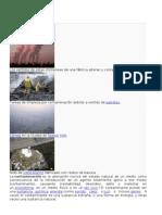 Contaminación ecologia ambiental