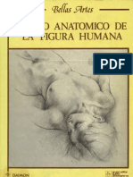 DibujoAnatomicoFiguraHumana L Gordon