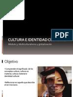 Cultura e Identidad CulturalL