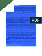 Windows NT y Sus Características