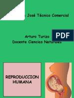 p455APARATOREPRDUCTORHUMANO