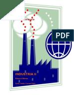 Manual Teorico Practico de Industria II