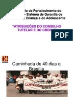 Apresentação Atribuições CT e CMDCA_Conselheira Ana Cristina