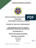 Informe de Practicas Profesionales 1