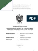 Informe de practicas-Sistema de Banca Móvil para Cooperativas