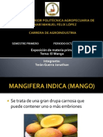 Exposicion Mango
