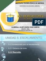 EXPOSICION DE U5. CRITERIOS Y CORRELACIONES..pptx