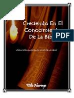 8130166 Panorama Biblico