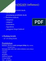 PERADANGAN (inflamasi)