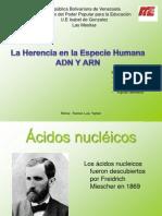 Acidos Nucleicos Richar