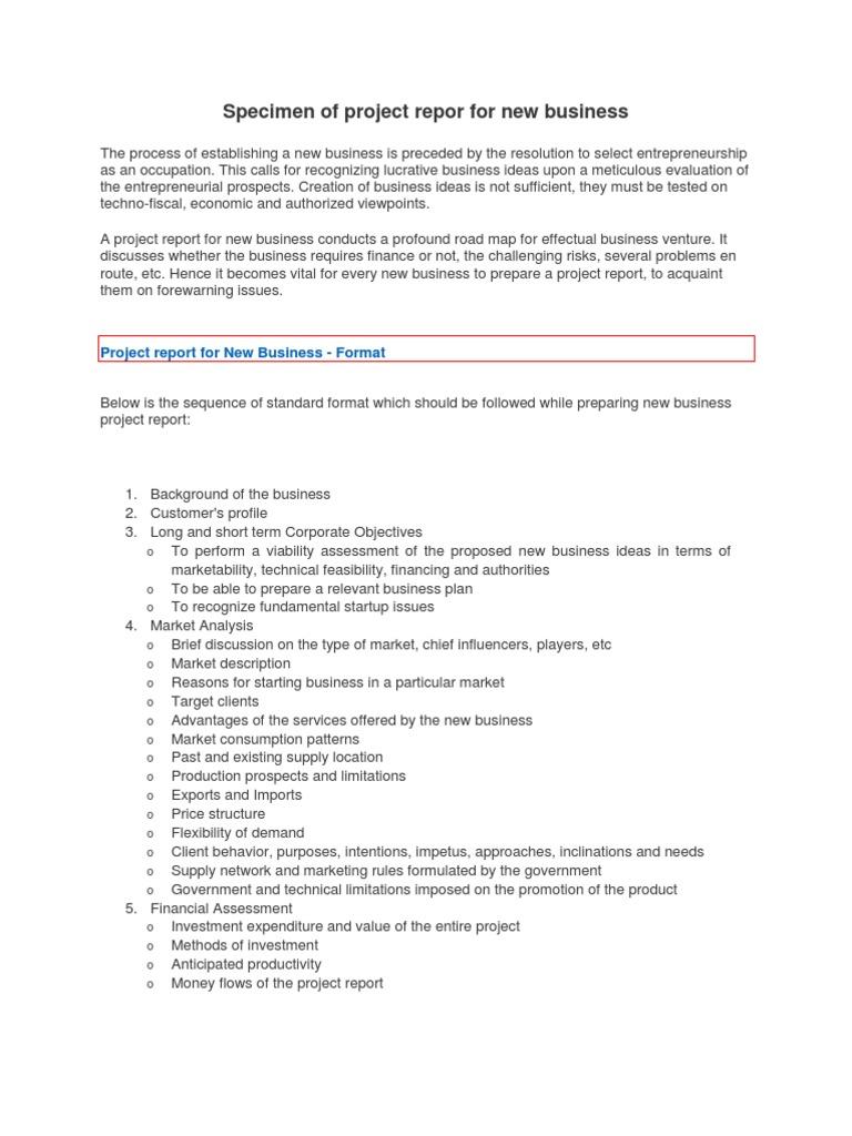 specimen of project repor for new business entrepreneurship business