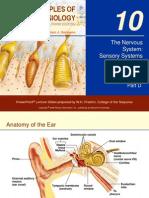 The Nervous System Sensory Systems