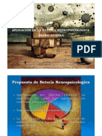 Taller Aplicacion Bateria Neuropsicoloxica Vigo Riveira