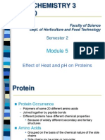 Kim Pang Protein 5
